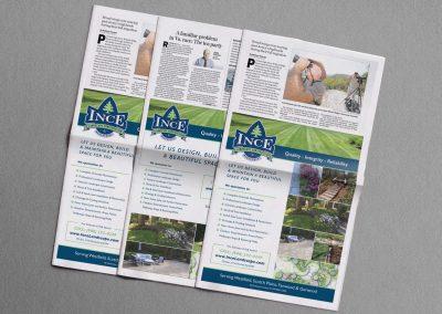 Editorial Advertisement Design